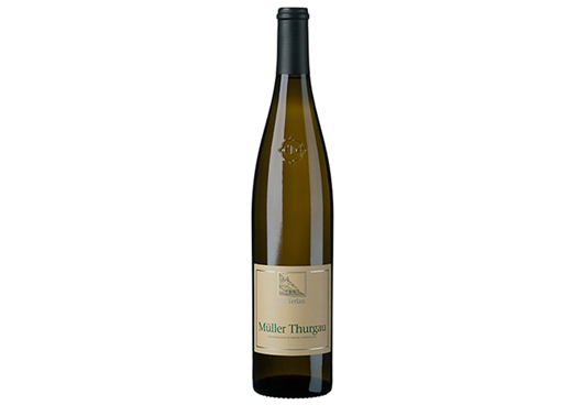 Picture of Muller Thurgau