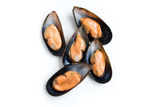 Picture of Black Sea Mussles